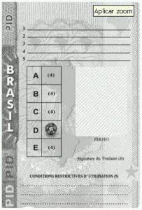 brazil-idp-2