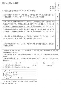 japan-idp-2