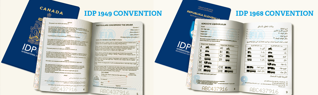 Images of international driving permits (IDP)
